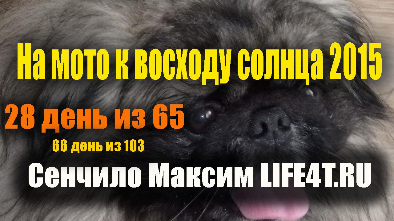 28 день. Хабаровск. Шашлыки